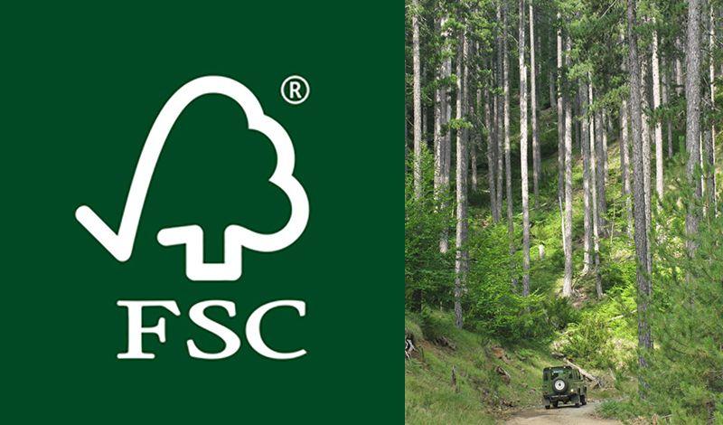 Πιστοποίηση FSC (Αειφορικής Δασικής Διαχείρισης)