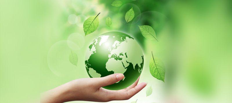 Περιβαλλοντικές επιπτώσεις του χαρτιού: μύθοι και αλήθειες