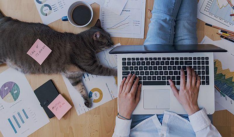 Δουλεύοντας στο σπίτι: 5 συμβουλές που θα σε βοηθήσουν να αυξήσεις την παραγωγικότητά σου