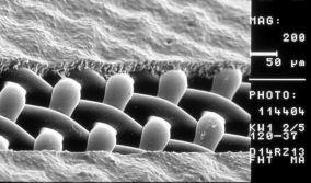 Παραγωγή στενσιλ για εκτύπωση μεταξοτυπίας