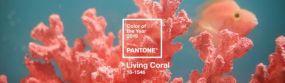 Living Coral: Το χρώμα του 2019 για την Pantone